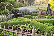 Green inspiration / Gardens that inspire me  / by Sheri Broadbent