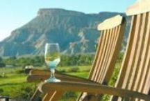 Colorado Wine / Taste the new Napa. Award winning varietals and blends from Colorado wineries. / by At Your Pace - Freestyle Cycling Adventures