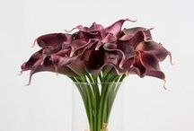 DIY Wedding Supplies / by Glam Floral