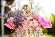 Gardening / by Dee Herrick