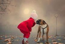 BOXER DOGS & DOGGY QUOTES / by *~*Amanda Latuske*~*