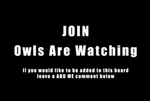 Owls Are Watching / Please add to this board pins related to title theme. Do not pin more than 10 pins at a time. Happy Pinning! / by Mihai Raitaru