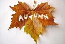 Autumn Leaves / by Cindy O'Dear