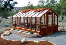 Greenhouses  / Going to have one of these we have lots of windows to use . Will sure beat haling plants in ever year. / by Martha Collins