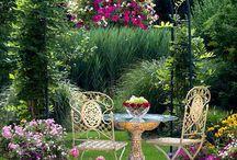 Garden / by Lydia Zarnay