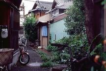 Nihon daisuki! / by Robyn Cruz-hawkins