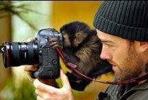 Photos..moments... / by Mhara Cris