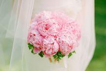 For florist / by Sarah Lawton