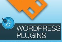 Wordpress Plugins / by Fabulous Blogging