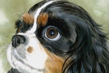 Cavalier King Charles Spaniels / by Beverly Geller