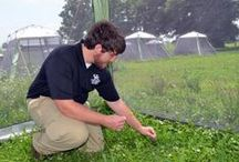 UK Ag students / by University of Kentucky College of Agriculture, Food and Environment