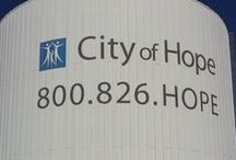 Walk for Hope  / Walk for Hope in the City of Hope on Sunday, November 3, 2011 / by Honey's Place
