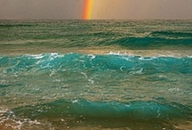 ocean waving / by myra york