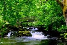Relaxation Music and Sounds of Nature / by Kimberly Thomas