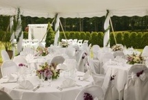 Outdoor Weddings / by Lake Pearl Luciano's