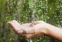 I Love Rain!! / by Joyce Nerad