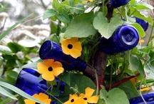 Gardening/Porches / by Sandra Stephenson