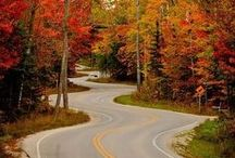 Down a Country Road / by Kathy Iveson