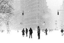 New York City / by Nicole Franzen
