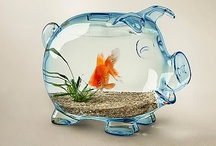 Sweet Fish Tanks / by Holly Wood