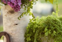 Garden & Outdoor Space / by Erin