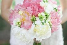Flowers - Bouquets / by April Lacy