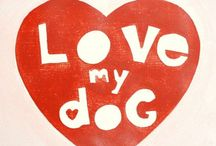 Doggy Fever / by Krystal McLeod