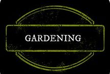 Gardening  / Gardening with Children, Fairy Gardens, Water Features, Outside Areas , tips and ticks / by Amber Whitehead
