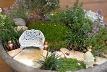 LLL Plants for Miniature Gardens / Plants for miniature gardens. Fairy Gardens, Mini Gardens, Gardening.  / by Lush Little Landscapes