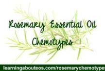 Essential Oils- Chem Types / by Passiflora Aromatics