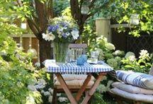 Garden impresionen / by Adele Prosto
