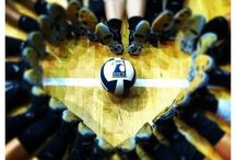 Volleyball ♡ / by S a h n i  S m i t h