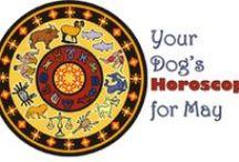 Dog Astrology / Dog astrology charts  / by DogTipper.com