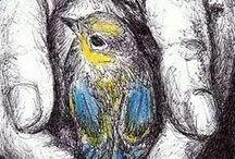 Beautiful Drawings / by Patricia Woolstencroft