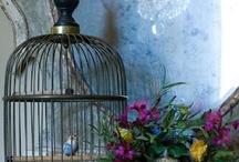Birdcages, Birdhouses / by Sandra Raichel