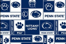 Pennsylvania State University / College with good sports that seems like fun. / by Ashley Castell
