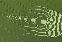 Crop Circles / by Robert Newman