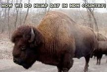 Native American Humor / The only thing that gets us through is God and being able to laugh at ourselves. / by lady bronc