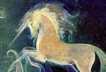 Unicórnis / Unicorn / by Memoria Floreus
