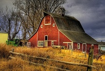 Farms, Barns and Fences / by Lorie VDZ
