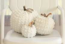 Fall Decor / by Lorie VDZ