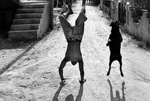 Photo: Black and White / by Michel Saldanha