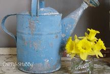 Vintage Watering Cans / Timeless Garden Accessory  / by Carolyn Larousse