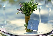 -:~:- The Table is Set! -:~:- / by Lynnette VanCleave