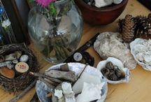 Materials naturals  / Deixar que els infants juguin lliurement amb objectes de la natura / by Missi Casacuberta