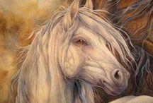 Just Horses! / by Jody Bergsma