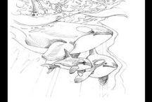 Drawing / by Jody Bergsma