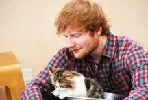 Oh Ed Sheeran :) / by Chelsea Brightwell