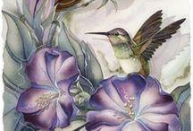 Hummingbird Fairies / by Jody Bergsma