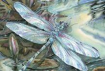 Dragonfly Magic. / Dragon and Damsel Flies. Natures Magic. / by Jody Bergsma